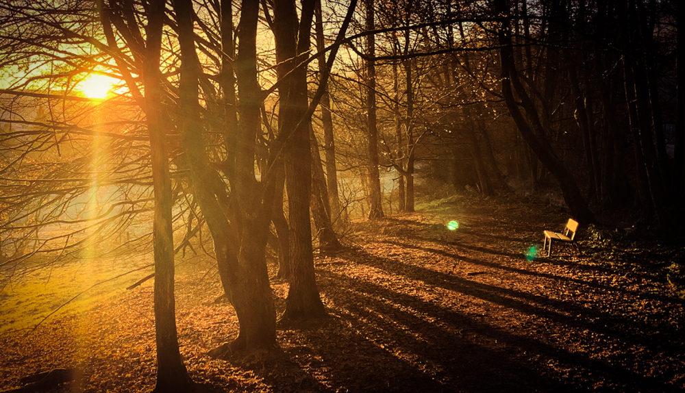 Ist Bad Orb bald frei von Tourismus in Wald und Flur? Bild: Printhouse Bad Orb / ten